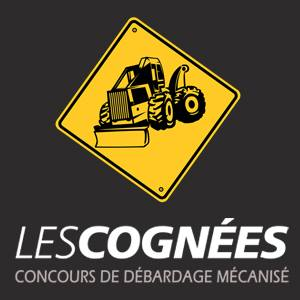 Les-cognees-gets