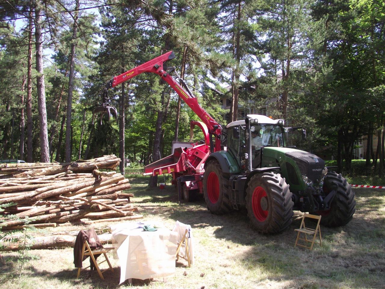 production de bois énergie
